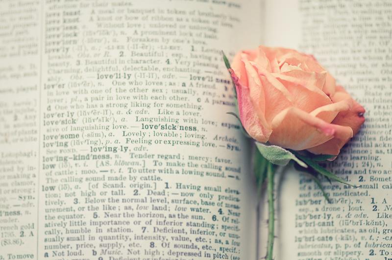 4 libri ispirati a vere storie d 39 amore i libri di roba for Libri di cucina da regalare