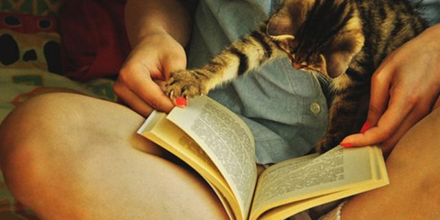 15 libri d'amore per inguaribili romantiche