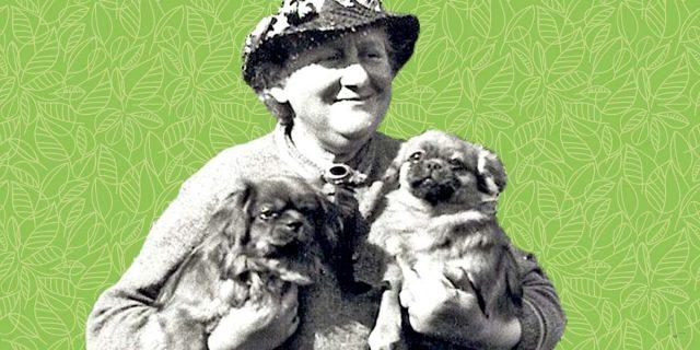Beatrix Potter, la ragazza che voleva scegliere chi sposare