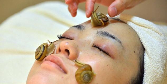Bava di lumaca: cos'è e come si usa per pelle e capelli