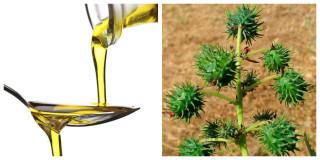 olio di ricino capelli