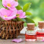 Olio di rosa mosqueta: il rimedio efficace per la cura della nostra pelle