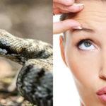Cos'è il siero di vipera e perché è usato nella cosmetica?