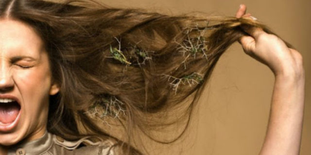 Come scegliere il districante capelli giusto per dire addio ai nodi